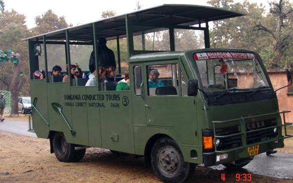 Canter Safari/Day Visit Online Booking in Jim Corbett National Park